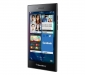 blackberry-leap-5
